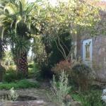buiten-tuin